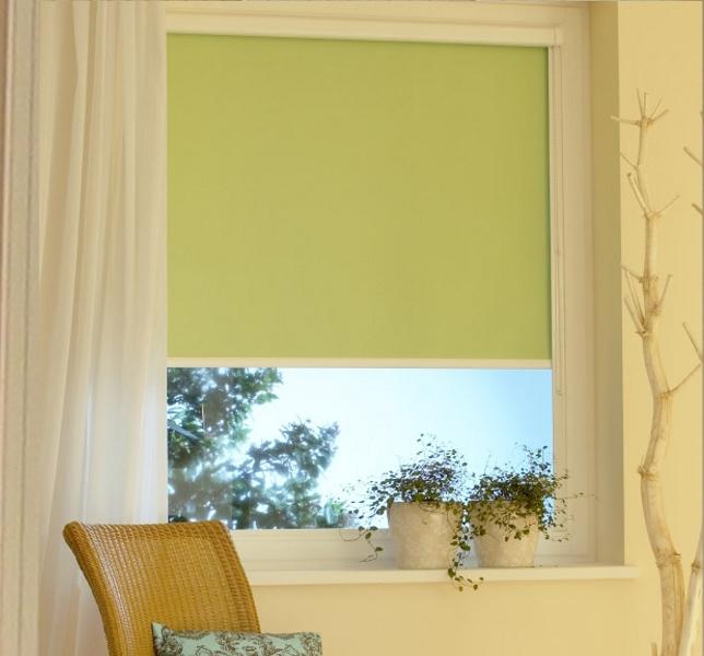 Наиболее простые, но достаточно красивые рулонные шторы