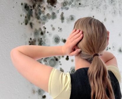 Если вы обнаружили плесень в ванной слишком поздно, и она повредила обширные участки помещения, придется принимать более радикальные меры