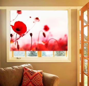 Рулонные шторы являются оптимальным и простым вариантом, чтобы придать помещению изящества и элегантности
