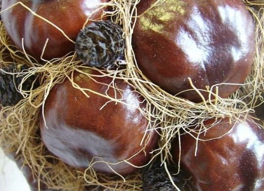Топиарий из каштанов может не ограничиваться только использованием именно этих плодов