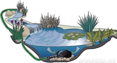 Обустройство искусственного пруда на приусадебном участкер